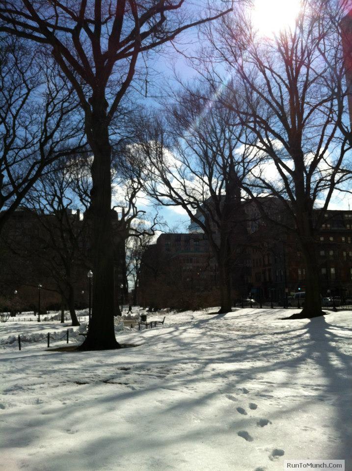 Boston Spring 4