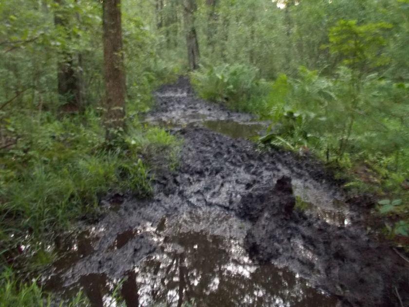 Tarc 50 Mud